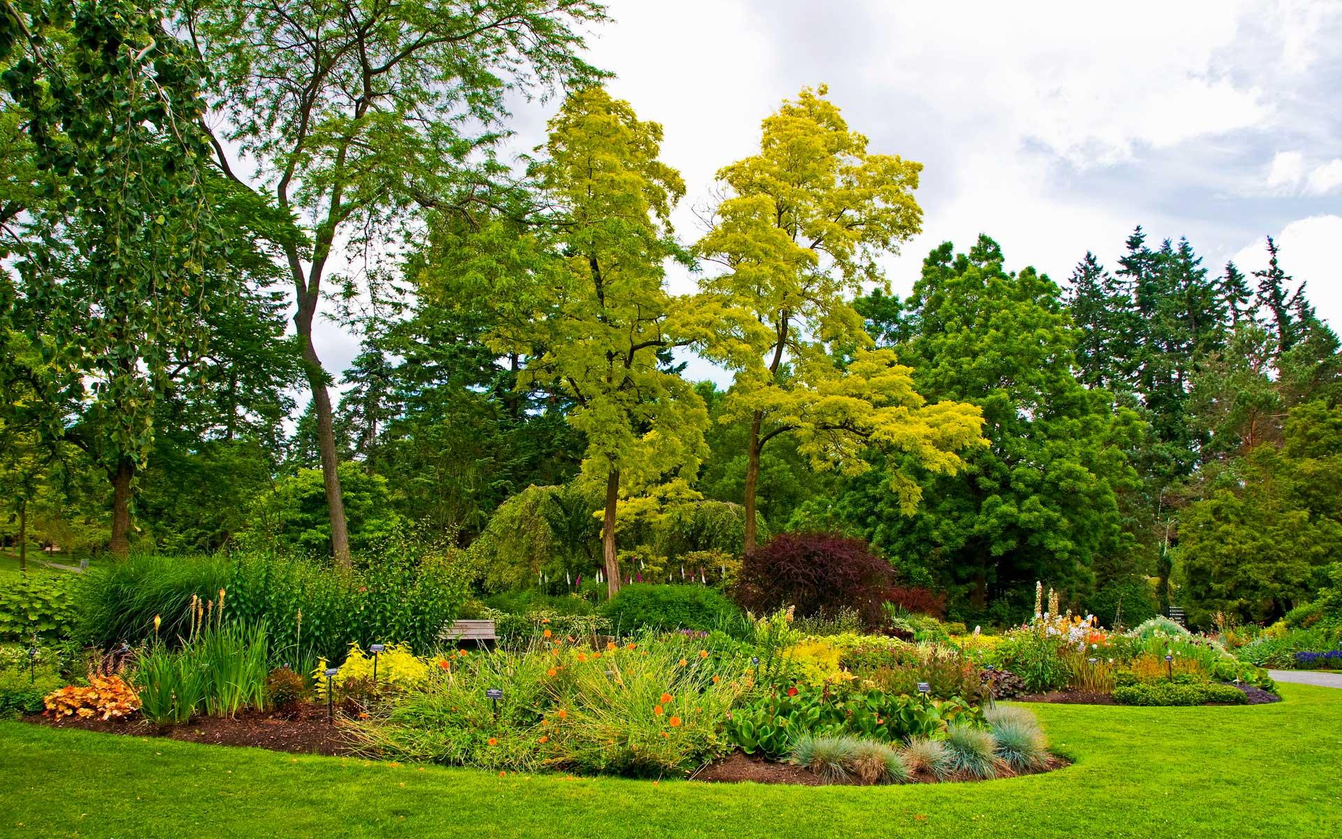 Mantenimiento de jardines en m xico ll menos al 5489 8962 for Mantenimiento de jardines
